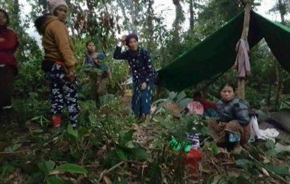 ပြည်တွင်းစစ်၊ တောဝက်များနှင့် ကြွက်တို့၏ ဖျက်ဆီးမှုကြောင့် ဆွမ်ပရာဘွမ်ဒေသခံများ ရိက္ခာပြတ်
