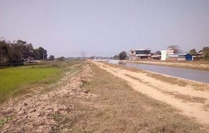 ပဲခူးတိုင်းအတွင်းရှိ ကားလမ်းဘေးလယ်ယာများ ရောင်းဝယ်မှုအားကောင်းနေ၍ နိုင်ငံတော်စိုက်ပျိုးမြေများ ဆုံးရှုံးနစ်နာ